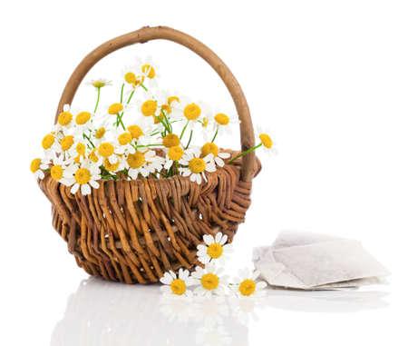 matricaria recutita: bellissimi fiori di camomilla in cestino con il sacchetto tee, isolato su sfondo bianco