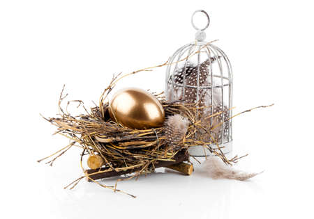 golden egg in the nest isolated on white background photo