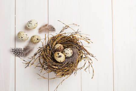 quail eggs on white wooden background
