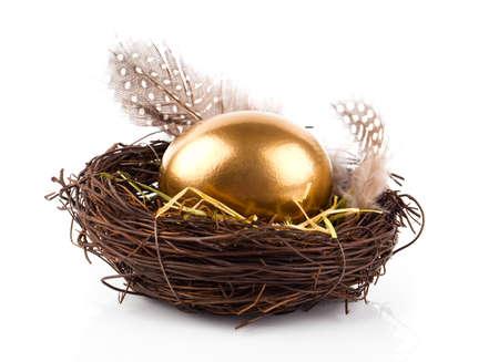golden eggs: Golden egg in nest on white background
