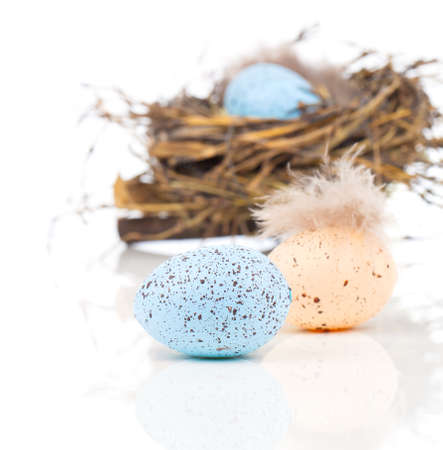 Easter eggs in bird nest isolated on white background photo