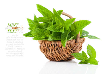 Mint in basket on white background, peppermint, selective focus, close up Stock Photo