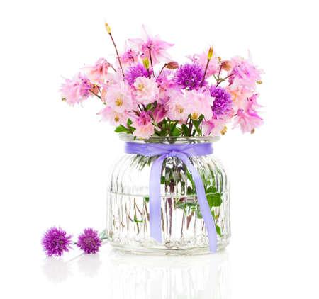 Aquilegia Vulgaris Granny39s Bonnet Oder Columbine Blume Isoliert ...