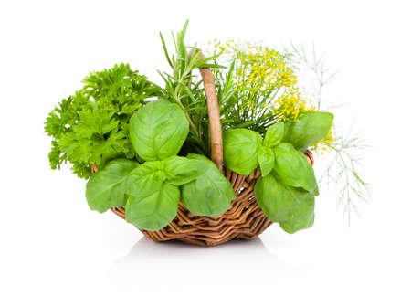 plantas medicinales: albahaca, perejil y eneldo en la cesta de mimbre, sobre un fondo blanco
