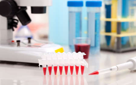 amplification: ubes for DNA amplification by PCR