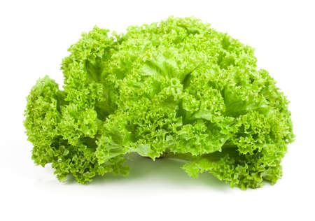 cornsalad: Fresh lettuce isolated on white background