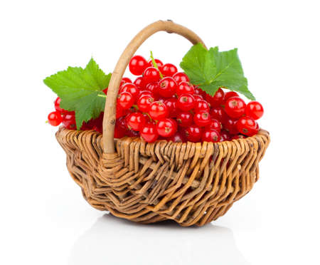 basket fruit: Basket full of red currant on a white background