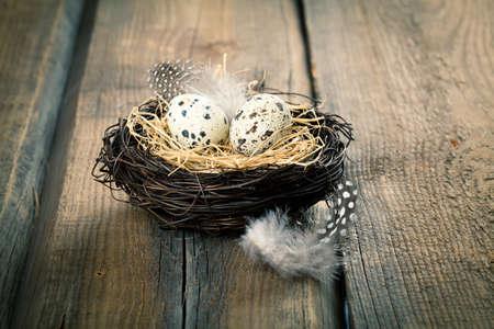 huevos de codorniz: huevos de codorniz en el nido sobre fondo de madera Foto de archivo
