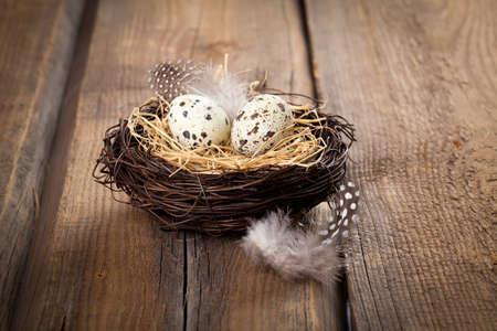 quail nest: quail eggs in nest on wooden background