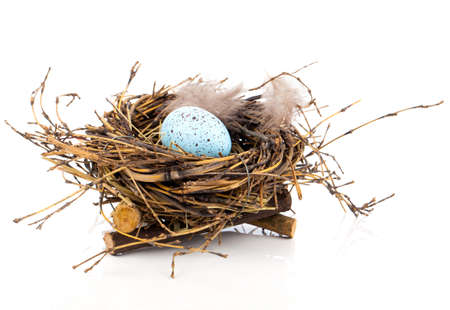 Easter egg in birds nest isolated on white background