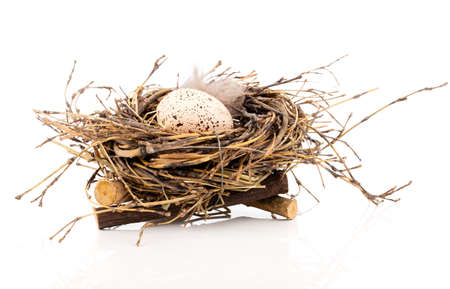 huevo blanco: Huevo de Pascua en nido de aves aisladas sobre fondo blanco