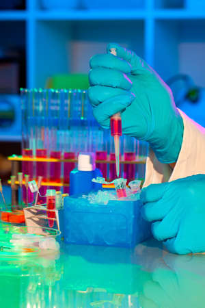 loads: researcher loads DNA samples for PCR analysis