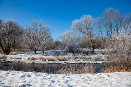 冬の季節に雪に覆われた木々や川の冬の風景,ドイツ