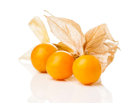 Physalis fruit on white background. Physalis is a genus of flowering plants in the nightshade family Solanaceae