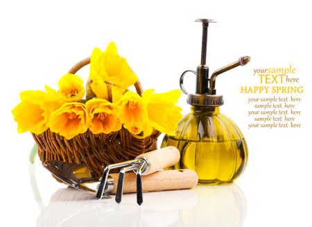 白い背景に、庭の道具とバスケットにナルキッソスの花の花束