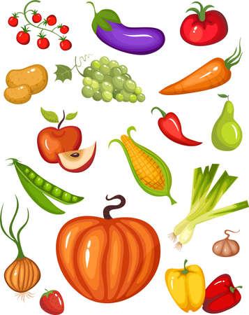 fruit Stock Vector - 5704086
