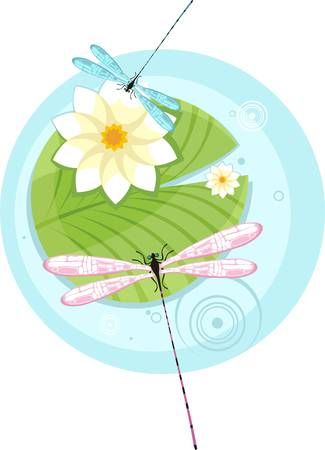 dragonfly Stock Vector - 5731721