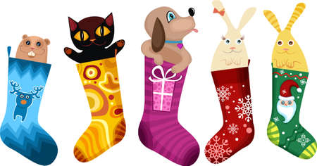 bunny xmas:  christmas stocking