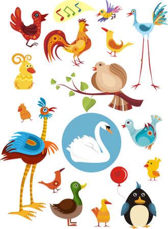 swans: bird set Illustration