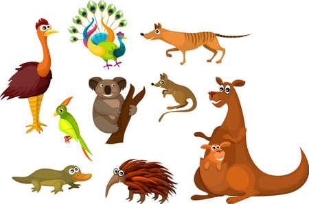 호주의 동물 일러스트