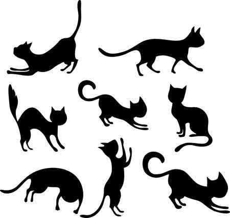 silueta de gato: cat conjunto Vectores