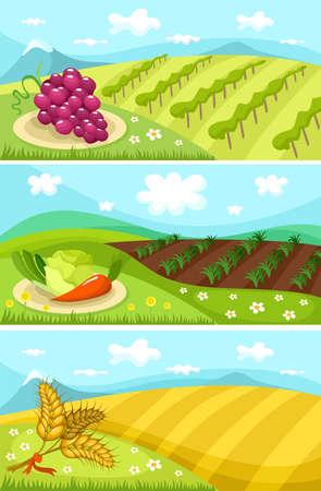 harvest card Vector