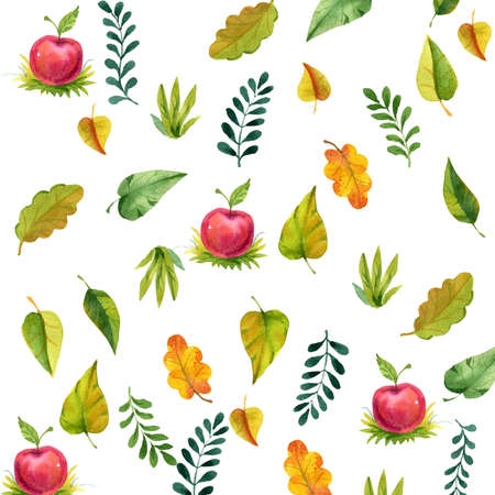 set of watercolor illustration foliage, autumn leaf Stock Photo