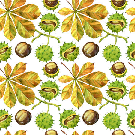 The leaf and the nut of the chestnut tree, in watercolour illustration. Pattern and texture of autumn theme. Raster illustration, handmade. Reklamní fotografie - 135454958