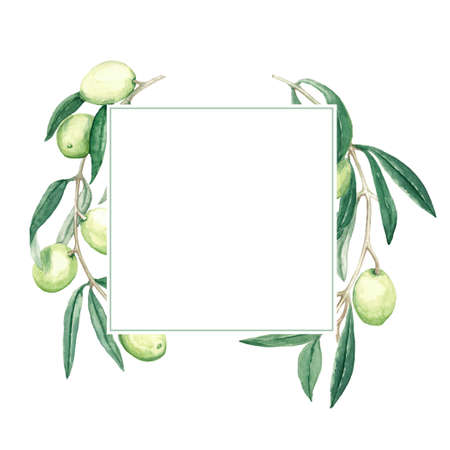frame square with a branch of green olives