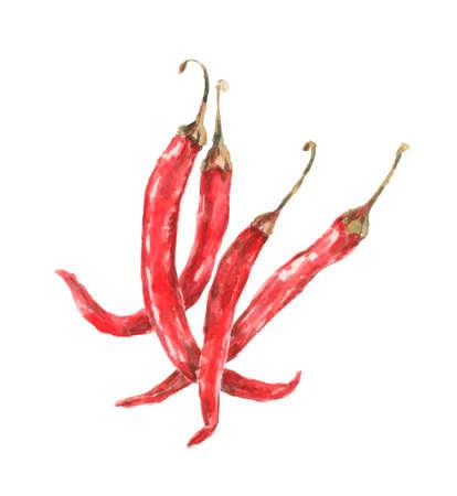 piment rouge chaud bio, dessin à l'aquarelle Banque d'images