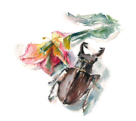 brown stag beetle sitting near a tulip