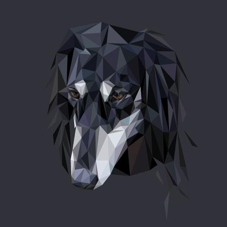 borzoi: Saluki dog polygonal portret Illustration