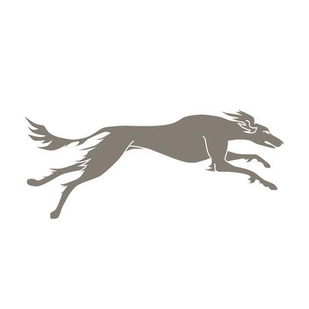 borzoi: Vector silhouette of running dog saluki breed