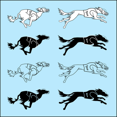 borzoi: Vector set of silhouettes running dog saluki breed, in dog racing or coursing dress