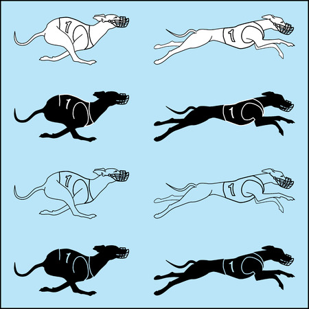 borzoi: Vector set of silhouettes running dog whippet breed, in dog racing or coursing dress Illustration