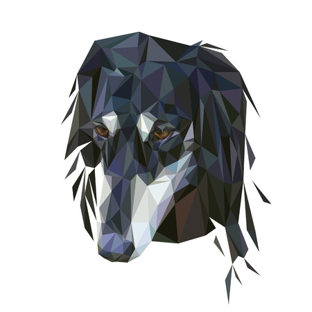 borzoi: portrait of the dog saluki breed, low poly style