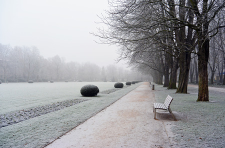 Leere Bank in bedecktem Hoar-Frostpark ein nebeliger Wintertag
