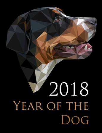 Color portrait of the Greater Swiss Mountain Dog, on black background, Chinese calendar Zodiac for 2018 New Year of the brown earth dog. Isolated vector silhouette made on low polygonal style.