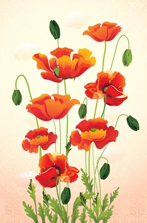 poppy field: ilustraci�n vectorial contiene la imagen de fondo de la amapola de flores