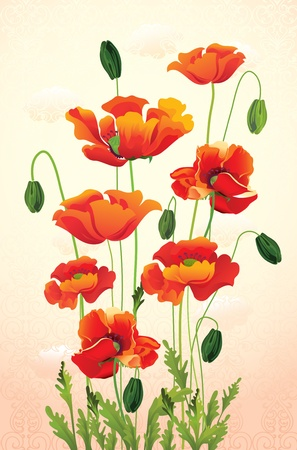 vector illustration contains the image of Poppy floral background