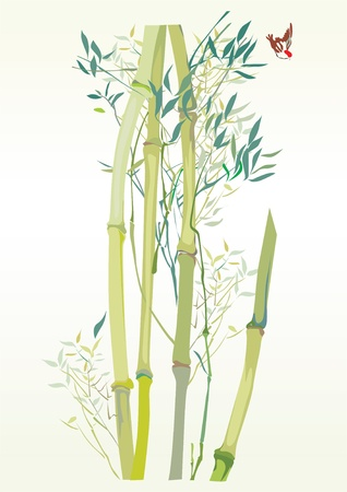 vectorl illustration contains the image of the Green Bamboo stems, isolated on a white background and bird Vector