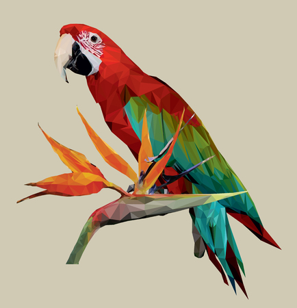 Vector image of a colored parrot on a branch with an exotic tropical flower. Illustration