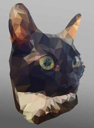Vector banner with cat head on the gray background. Triangulated illustration in realistic style. Portrait of a black and white kitten close-up