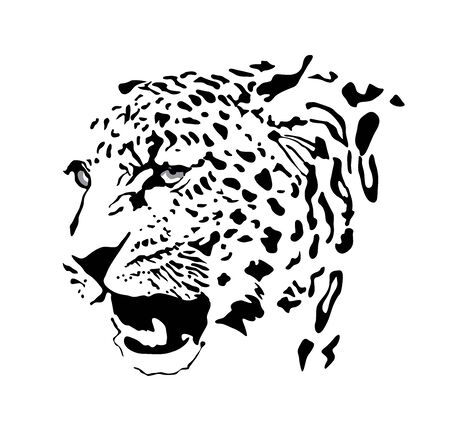 Black and white, and yellow color vector portrait of a wild leopard. Can be used as fashion design, bookplate, tattoo design, emblem, badge, t-shirt print.