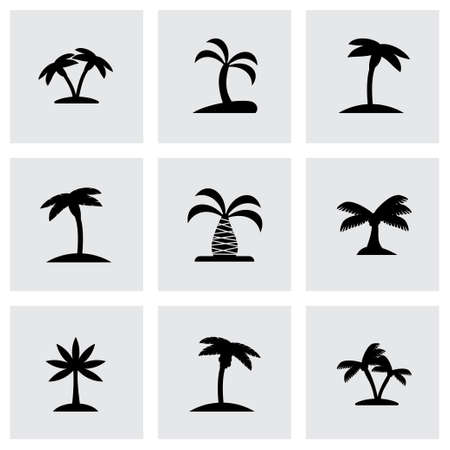 tree silhouettes: Vector palm icon set on grey background Illustration