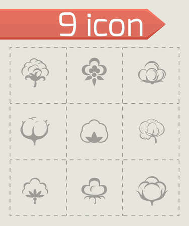 boll: Vector cotton icon set on grey background