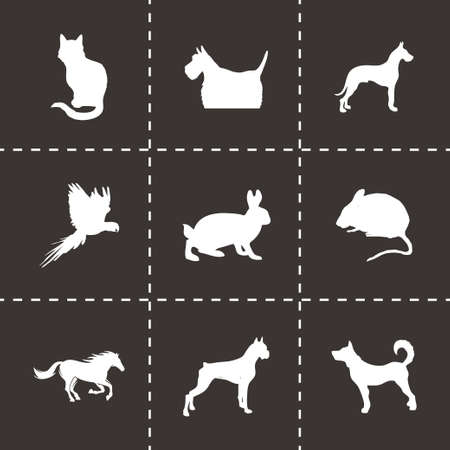 Vector pet icons set on black background Vector