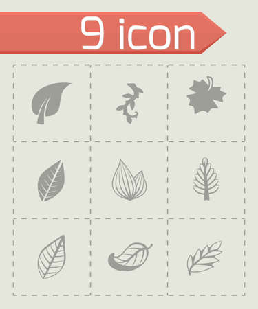 gum tree: Vector leaf icon set on grey background