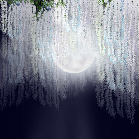 illustration of blooming white wisteria flowers hanging from above at night with full Moon view and space for text