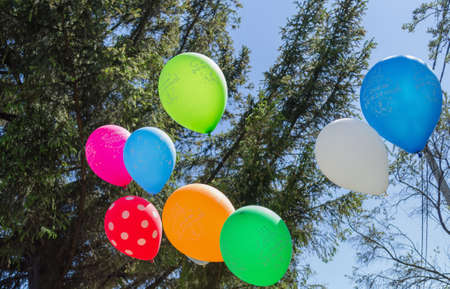 Colorful balloons with russian text means Happy birthday and fir tree with blue sky